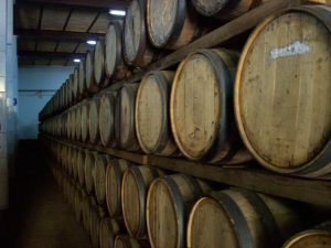 aging barrels for tequila at Casa Herradura, tequila processing plant