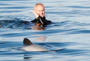 Dave Clingman swimming with Hector's Dolphins at Akaroa, New Zealand