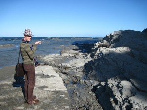Andrew J. Wharton points out seal at Kaikoura, New Zealand