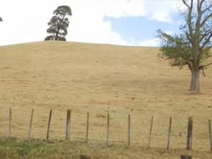 2013 New Zealand drought-dried grass hills