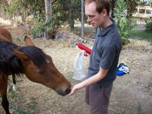 Andrew Wharton feeds his adopted horse, Jorge, at the San Jose del Tajo RV motorhome park in Tlajomulco, Jalisco, Mexico, near Guadalajara